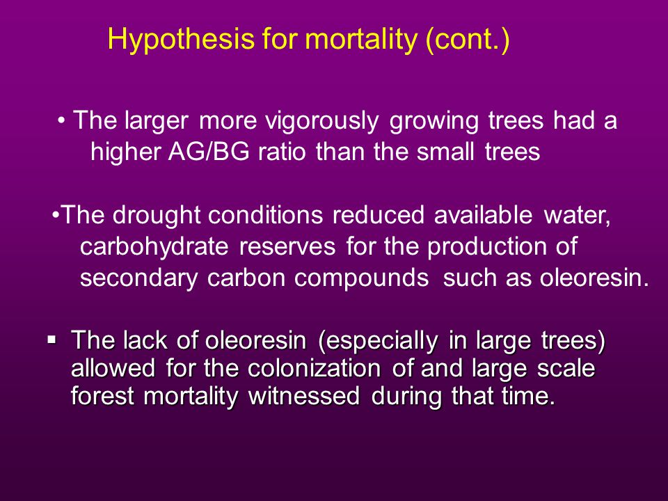  The lack of oleoresin (especially in large trees) allowed for the colonization of and large scale forest mortality witnessed during that time.
