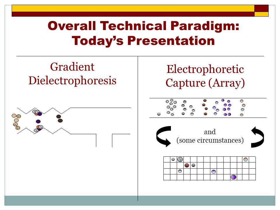 Overall Technical Paradigm: Today's Presentation Gradient Dielectrophoresis Electrophoretic Capture (Array) and (some circumstances)