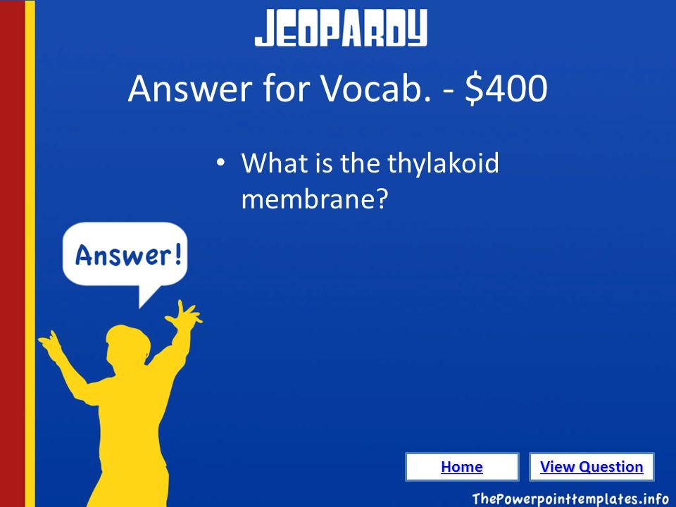 Answer for Vocab. - $400 What is the thylakoid membrane Home View Question View Question