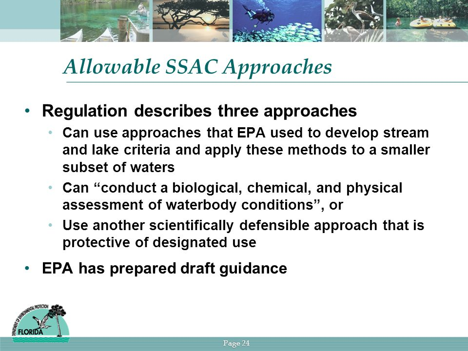 Page 24 Allowable SSAC Approaches Regulation describes three approaches Can use approaches that EPA used to develop stream and lake criteria and apply these methods to a smaller subset of waters Can conduct a biological, chemical, and physical assessment of waterbody conditions , or Use another scientifically defensible approach that is protective of designated use EPA has prepared draft guidance