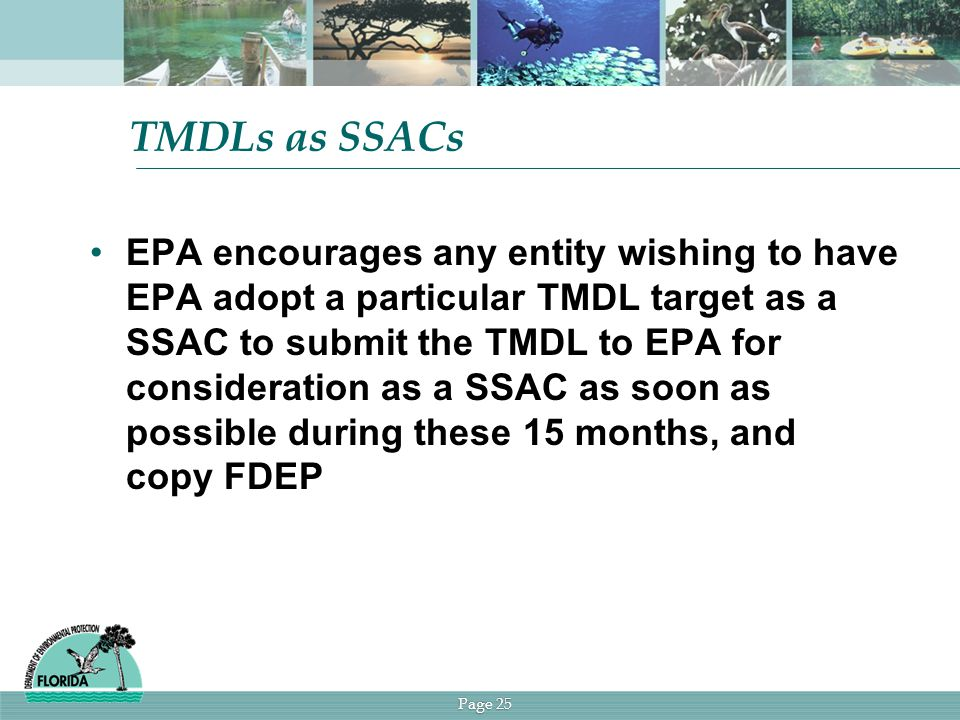Page 25 TMDLs as SSACs EPA encourages any entity wishing to have EPA adopt a particular TMDL target as a SSAC to submit the TMDL to EPA for consideration as a SSAC as soon as possible during these 15 months, and copy FDEP