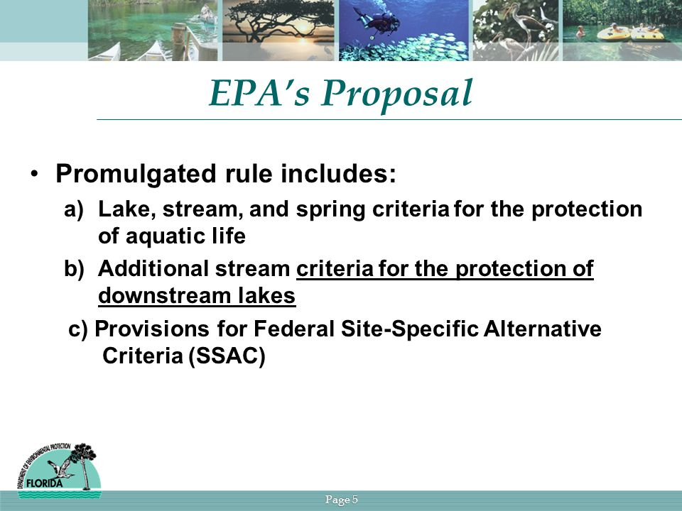 Page 5 EPA's Proposal Promulgated rule includes: a)Lake, stream, and spring criteria for the protection of aquatic life b)Additional stream criteria for the protection of downstream lakes c) Provisions for Federal Site-Specific Alternative Criteria (SSAC)