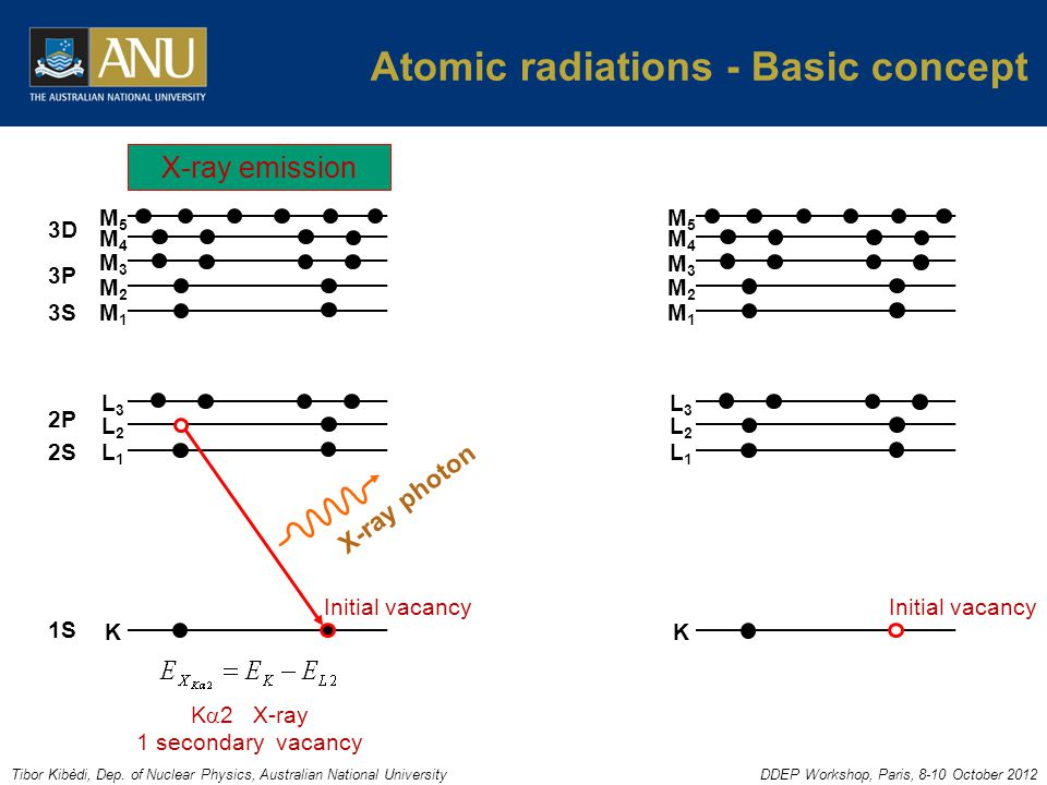 Tibor Kibèdi, Dep. of Nuclear Physics, Australian National UniversityDDEP Workshop, Paris, 8-10 October 2012 Atomic radiations - Basic concept K L1L1