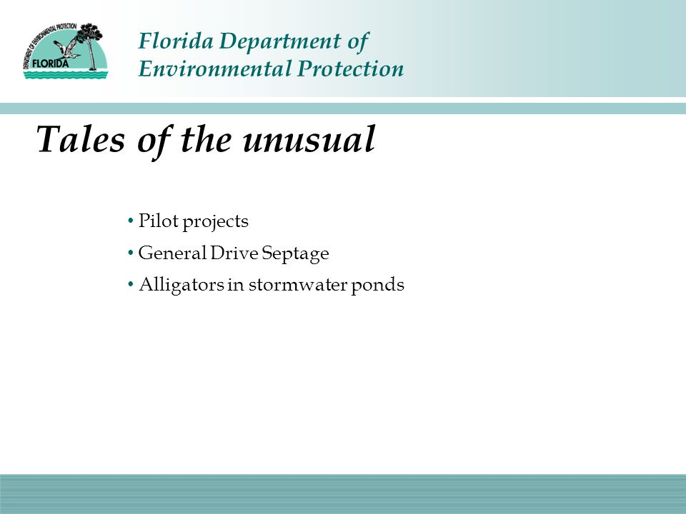 Florida Department of Environmental Protection Tales of the unusual Pilot projects General Drive Septage Alligators in stormwater ponds