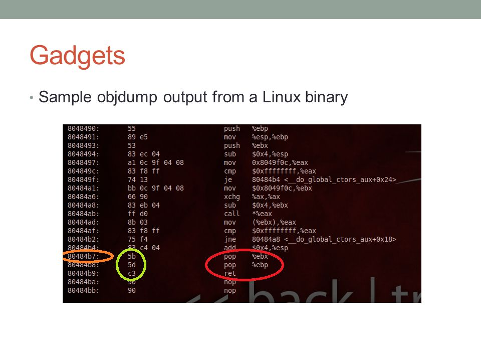 Gadgets Sample objdump output from a Linux binary