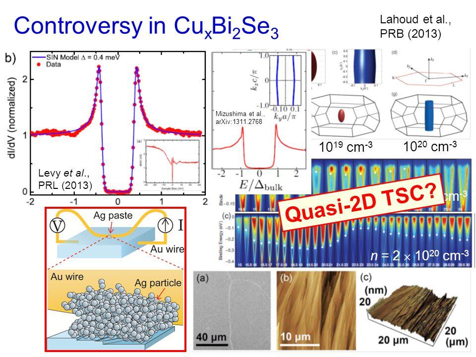 Controversy in Cu x Bi 2 Se 3 n  10 17 cm -3 10 19 cm -3 10 20 cm -3 Lahoud et al., PRB (2013) n = 2  10 20 cm -3 n = 4  10 17 cm -3 Levy et al., PRL (2013) Quasi-2D TSC.