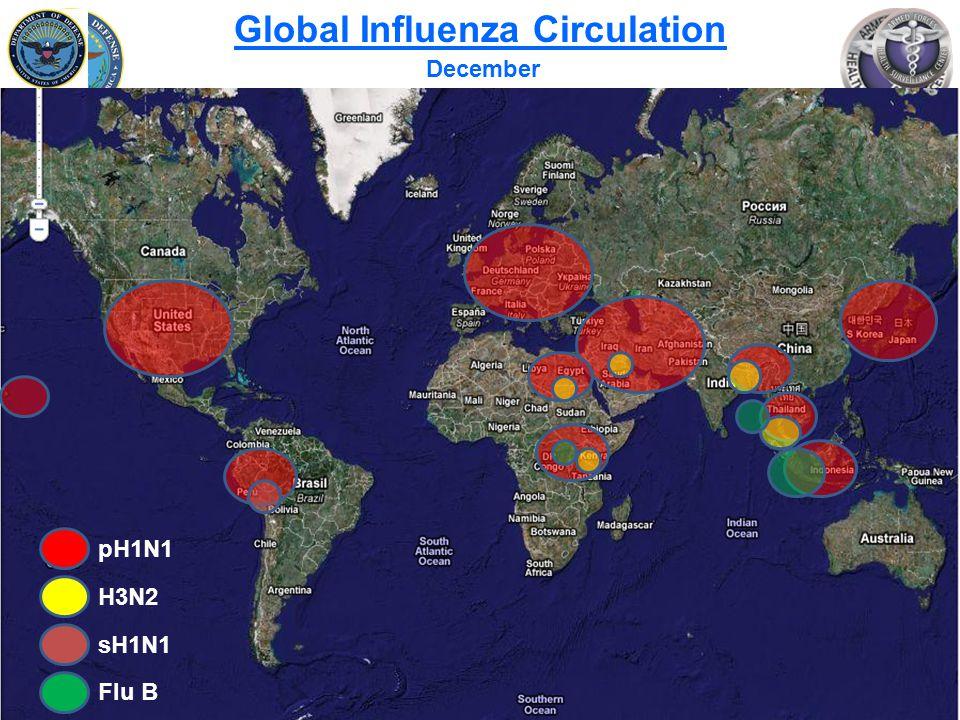 Slide 10 of 25 Global Influenza Circulation December pH1N1 H3N2 sH1N1 Flu B