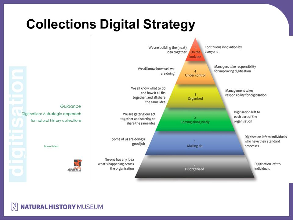 Collections Digital Strategy