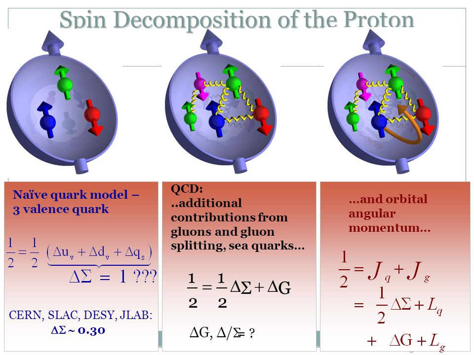 58 Spin Decomposition of the Proton Naïve quark model – 3 valence quark CERN, SLAC, DESY, JLAB:   0.30 …and orbital angular momentum… QCD:..additional contributions from gluons and gluon splitting, sea quarks… GΣ 2 1 2 1  ΔG, Δ/ Σ =