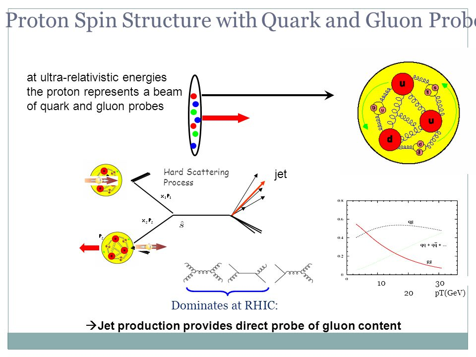 9 at ultra-relativistic energies the proton represents a beam of quark and gluon probes  Jet production provides direct probe of gluon content Proton Spin Structure with Quark and Gluon Probes Hard Scattering Process jet Dominates at RHIC: 10 20 30 pT(GeV)
