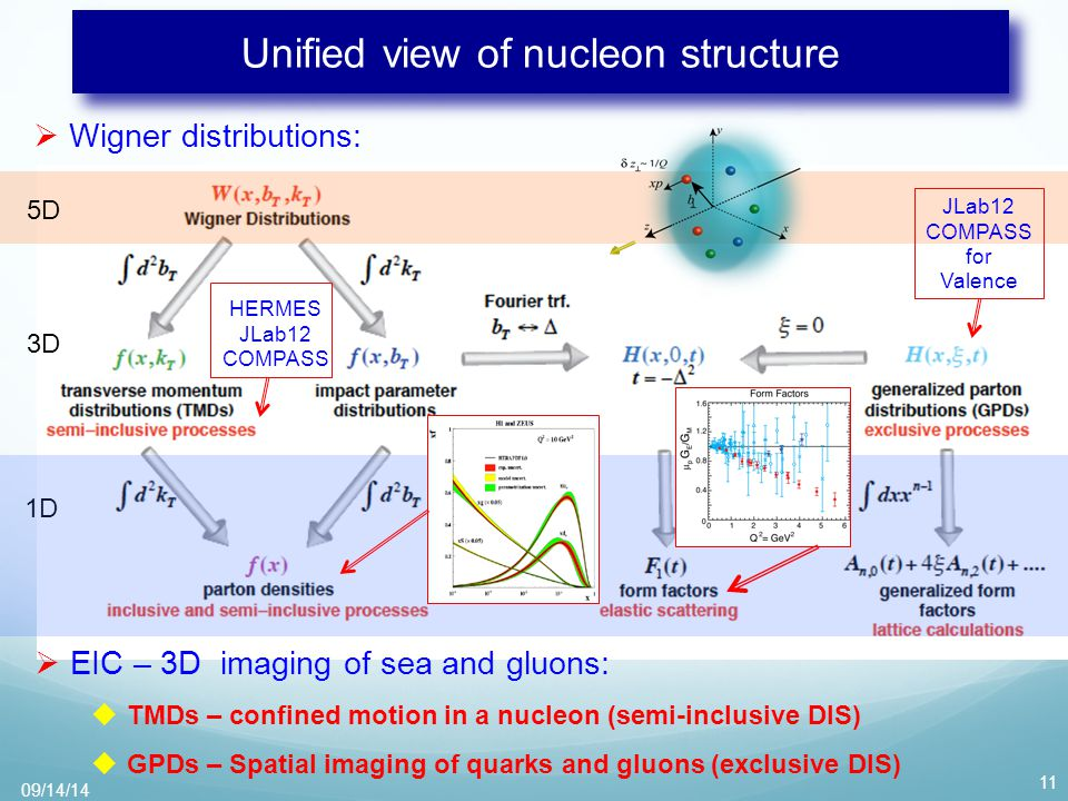 Unified view of nucleon structure  Wigner distributions: 11  EIC – 3D imaging of sea and gluons:  TMDs – confined motion in a nucleon (semi-inclusive DIS)  GPDs – Spatial imaging of quarks and gluons (exclusive DIS) 5D 3D 1D JLab12 COMPASS for Valence HERMES JLab12 COMPASS 09/14/14