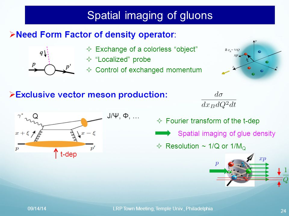  Need Form Factor of density operator:  Exchange of a colorless object  Localized probe  Control of exchanged momentum Spatial imaging of gluons 24 09/14/14LRP Town Meeting, Temple Univ., Philadelphia  Exclusive vector meson production: t-dep J/Ψ, Φ, …  Fourier transform of the t-dep Spatial imaging of glue density  Resolution ~ 1/Q or 1/M Q Q