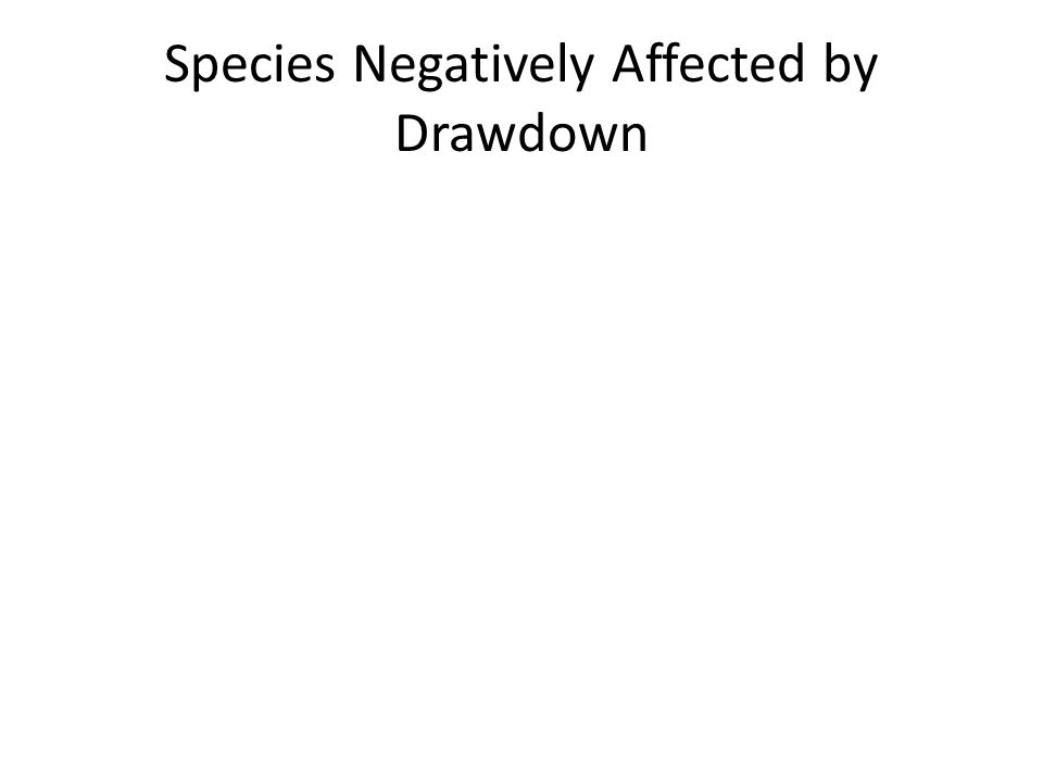 Species Negatively Affected by Drawdown