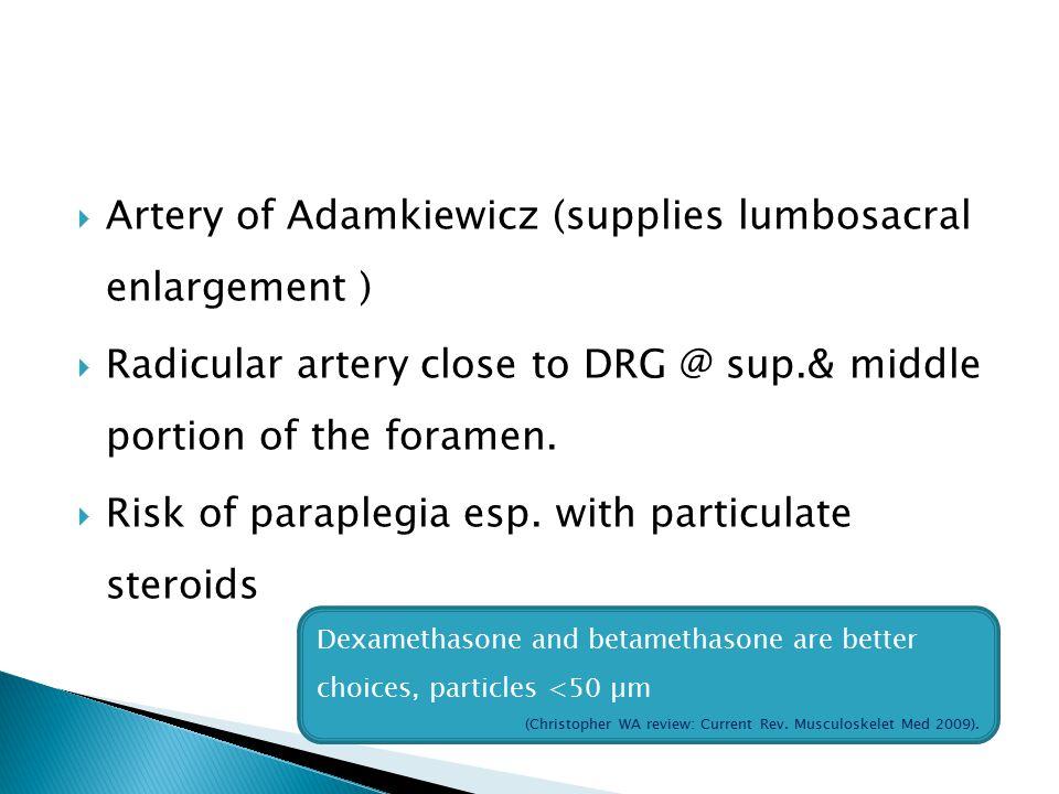  Artery of Adamkiewicz (supplies lumbosacral enlargement )  Radicular artery close to DRG @ sup.& middle portion of the foramen.  Risk of paraplegi
