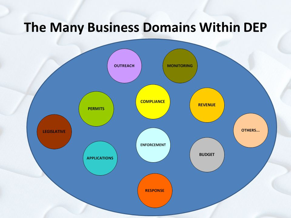 The Many Business Domains Within DEP