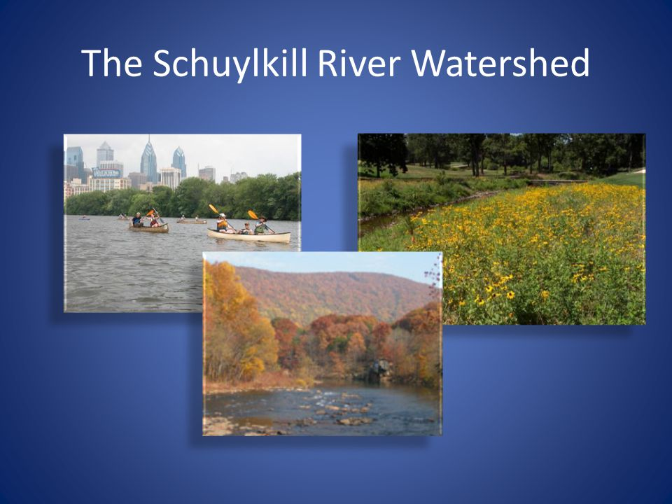The Schuylkill River Watershed