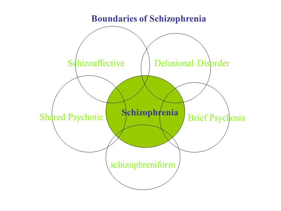 Schizophrenia Delusional DisorderSchizoaffective schizophreniform Shared Psychotic Brief Psychosis Boundaries of Schizophrenia