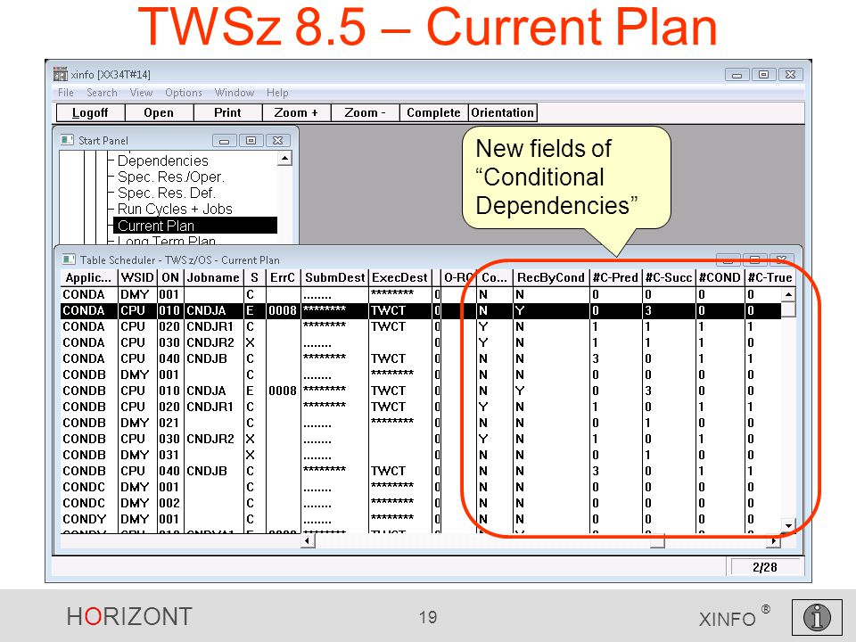 HORIZONT 19 XINFO ® TWSz 8.5 – Current Plan New fields of Conditional Dependencies