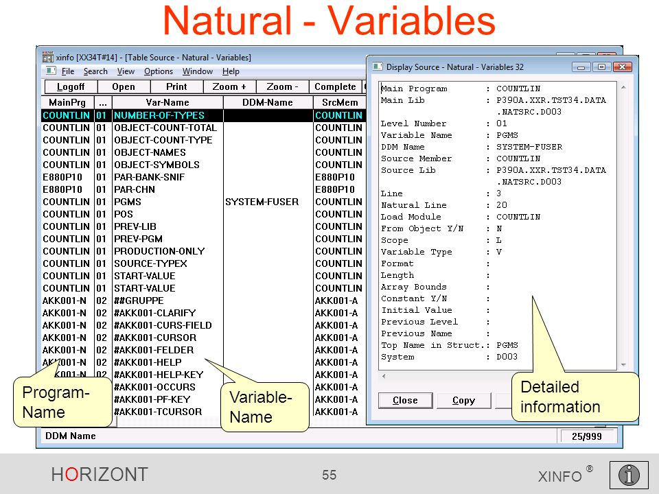 HORIZONT 55 XINFO ® Natural - Variables Detailed information Variable- Name Program- Name