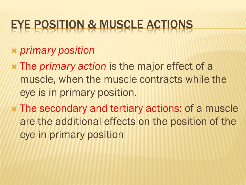  primary position  The primary action is the major effect of a muscle, when the muscle contracts while the eye is in primary position.