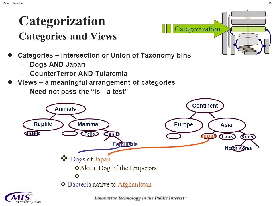 18ControlNumber Categorization Ontologies and Taxonomies Continent Laos Korea North Korea Asia Europe Ontologies: From ontology , study of being or existence Nested set of entities that pass the is-a test Taxonomies … sections of Ontologies Animals Felis Canis Familiaris Mammal Reptile Snake Is - a Categorization