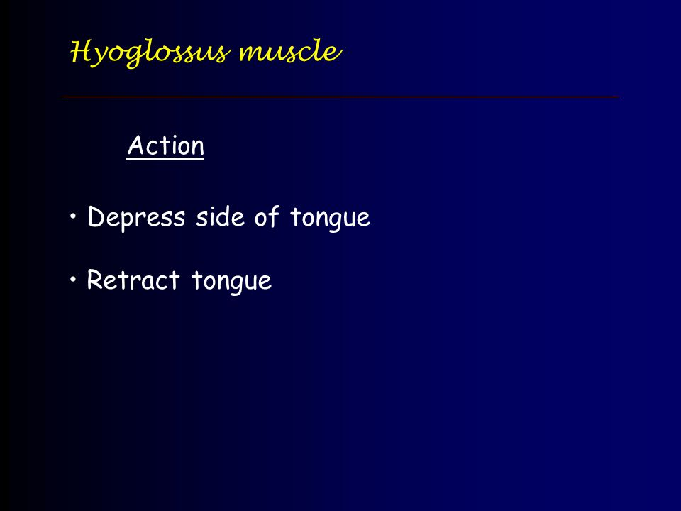 Hyoglossus muscle Action Depress side of tongue Retract tongue
