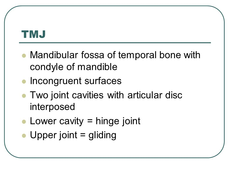 TMJ Mandibular fossa of temporal bone with condyle of mandible Incongruent surfaces Two joint cavities with articular disc interposed Lower cavity = h