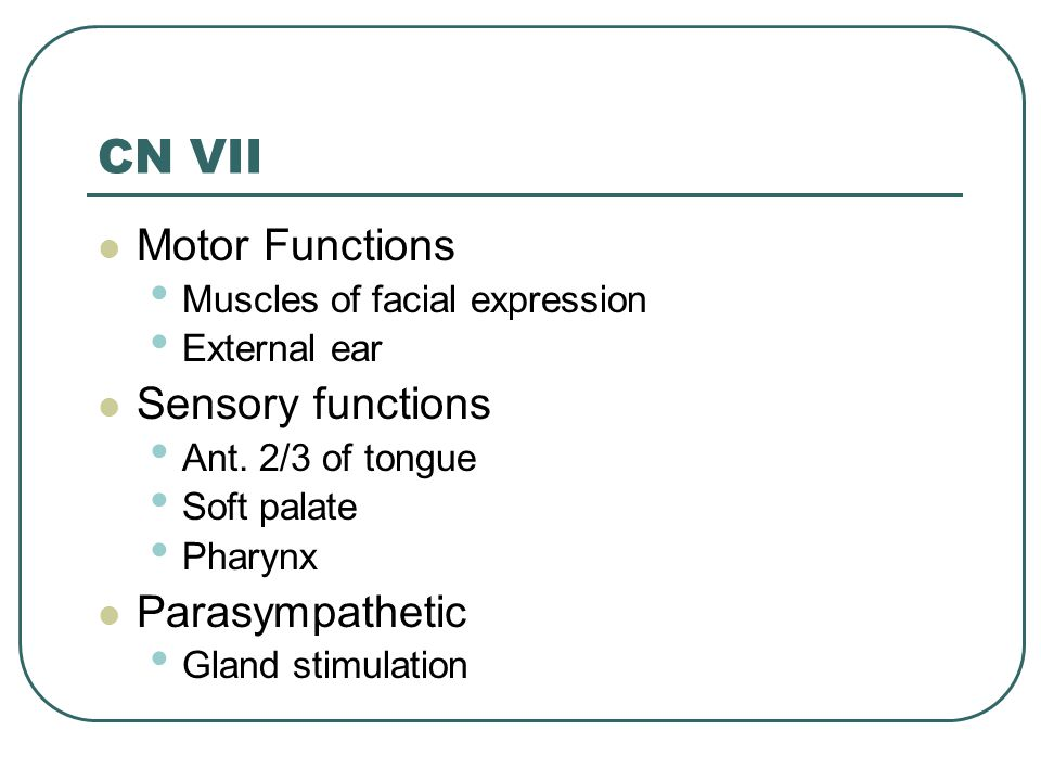 CN VII Motor Functions Muscles of facial expression External ear Sensory functions Ant. 2/3 of tongue Soft palate Pharynx Parasympathetic Gland stimul