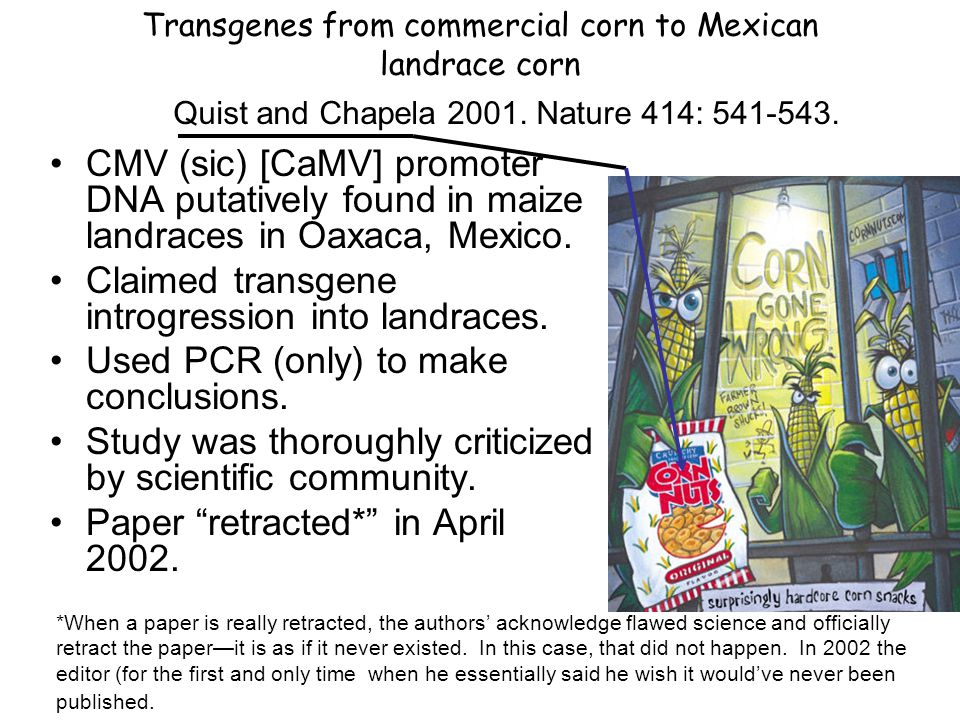 Figure 5.1 Corn belt Oaxaca, Mexico Illicit gene flow from, GM corn to Mexican landrace corn 2001 The case of Quist and Chapela Stewart (2004) Genetically Modified Planet