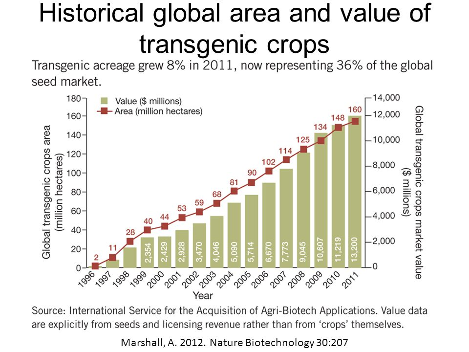 Conclusions No technology is risk-free, but plant biotechnology is not risky per se Food, corporate control, and environment causes are social issues that reach beyond science GMOs are one tool for agricultural and environmental security and sustainability