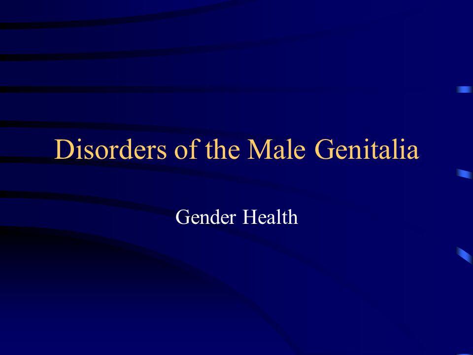 Disorders of the Male Genitalia Gender Health