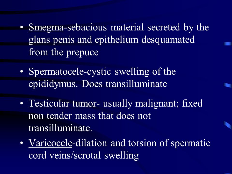 Smegma-sebacious material secreted by the glans penis and epithelium desquamated from the prepuce Spermatocele-cystic swelling of the epididymus. Does