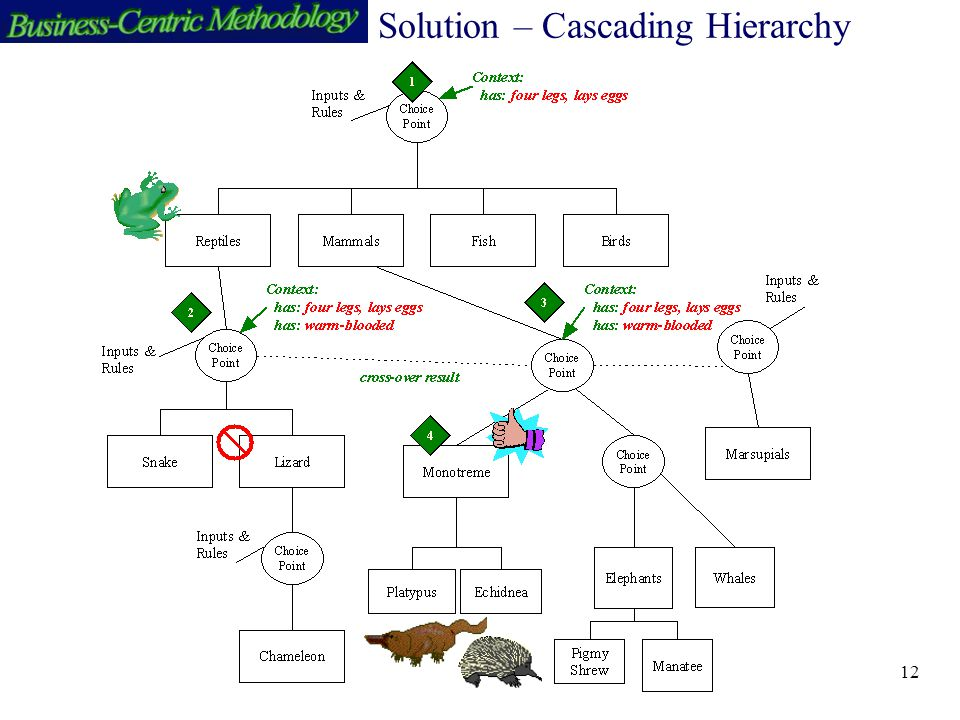 12 Solution – Cascading Hierarchy