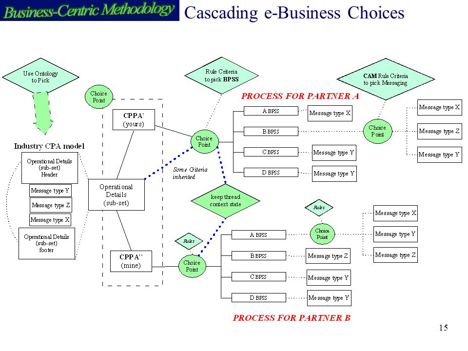 15 Cascading e-Business Choices