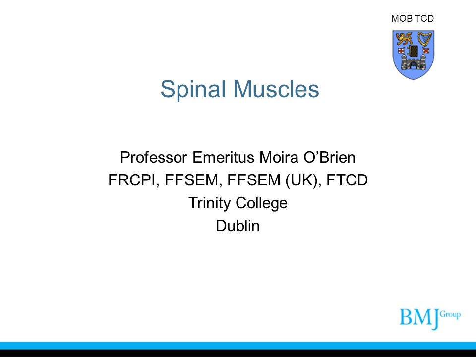 MOB TCD Spinal Muscles Professor Emeritus Moira O'Brien FRCPI, FFSEM, FFSEM (UK), FTCD Trinity College Dublin