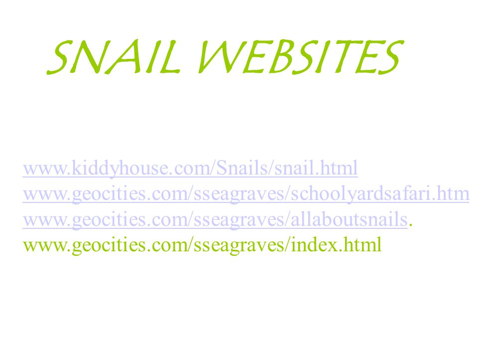 www.kiddyhouse.com/Snails/snail.html www.geocities.com/sseagraves/schoolyardsafari.htm www.geocities.com/sseagraves/allaboutsnailswww.geocities.com/sseagraves/allaboutsnails.