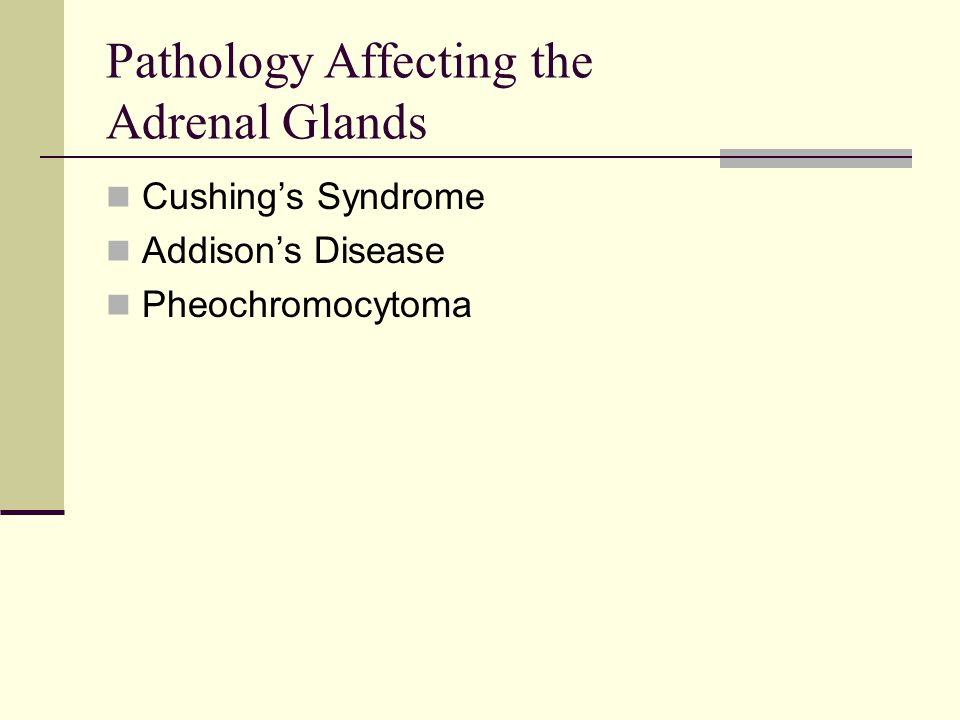 Pathology Affecting the Adrenal Glands Cushing's Syndrome Addison's Disease Pheochromocytoma