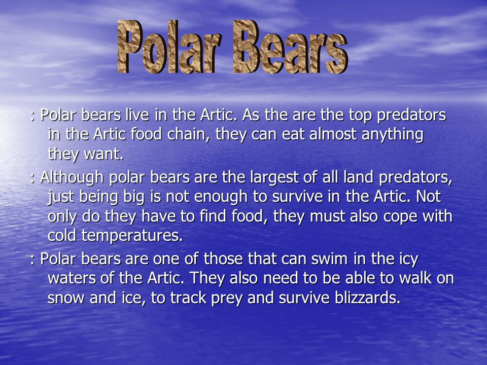 : Polar bears live in the Artic.