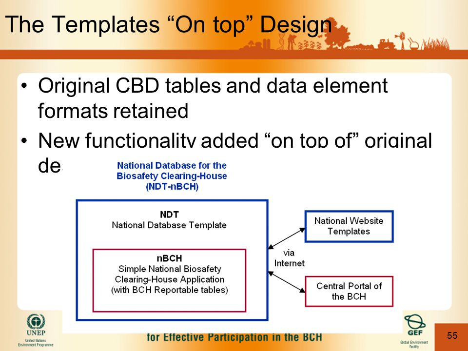 "55 The Templates ""On top"" Design Original CBD tables and data element formats retained New functionality added ""on top of"" original design"