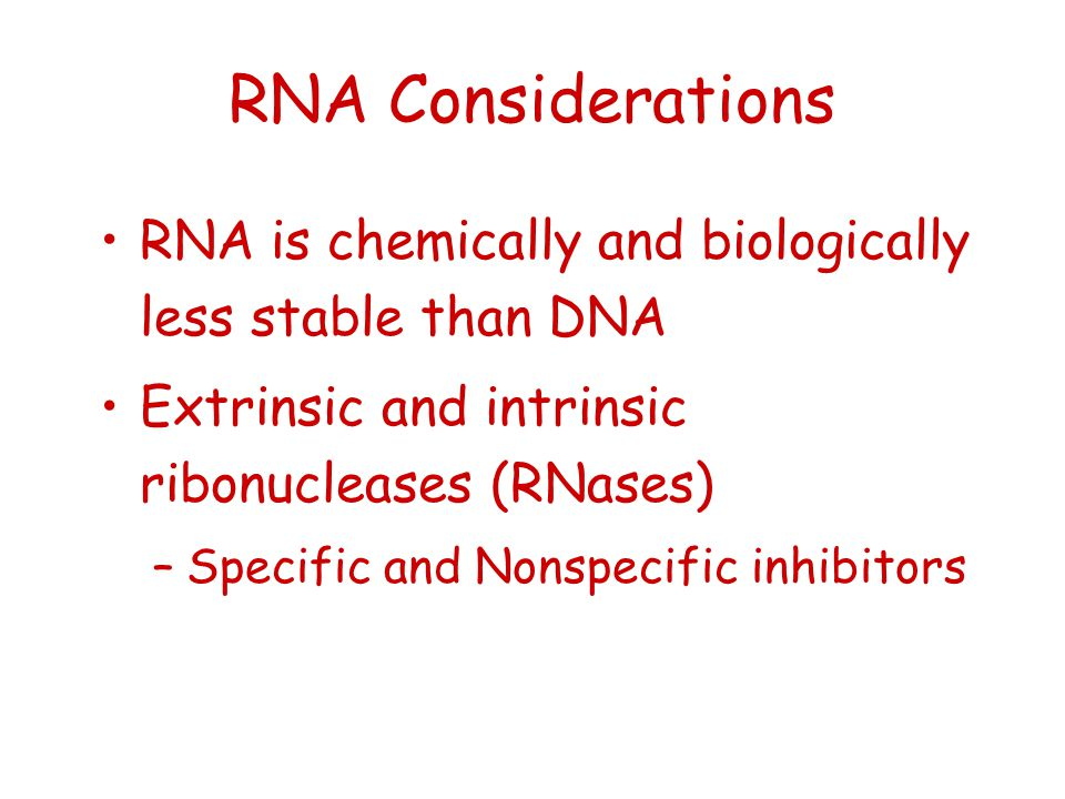 RNA Considerations RNA is chemically and biologically less stable than DNA Extrinsic and intrinsic ribonucleases (RNases) –Specific and Nonspecific in
