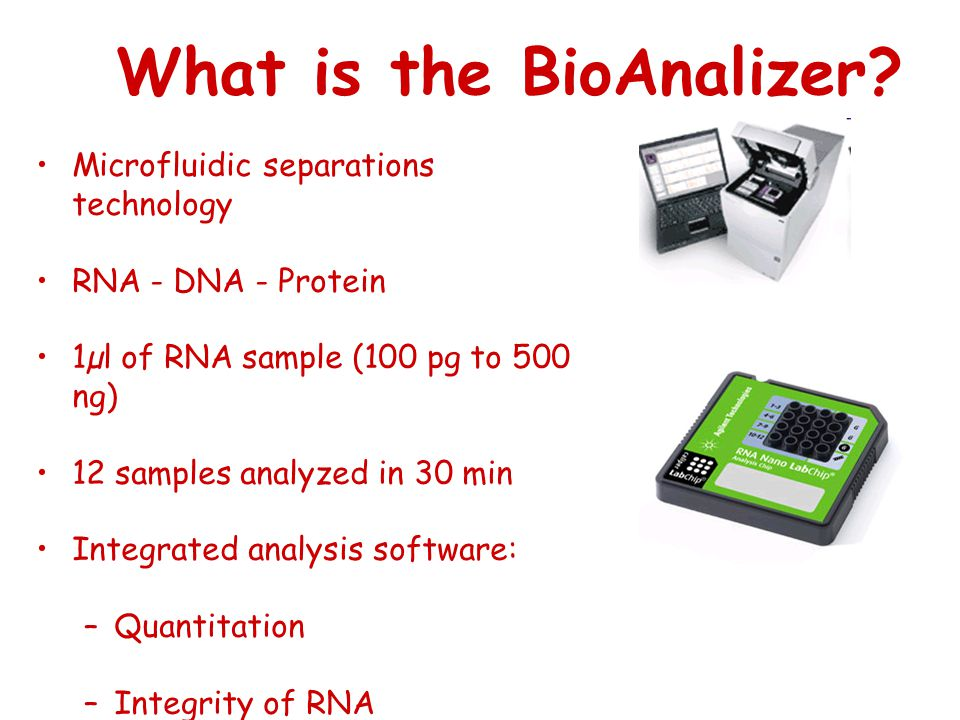 What is the BioAnalizer.