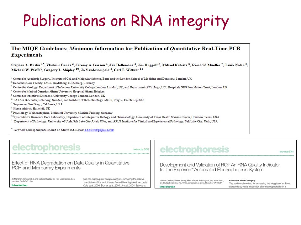 Publications on RNA integrity