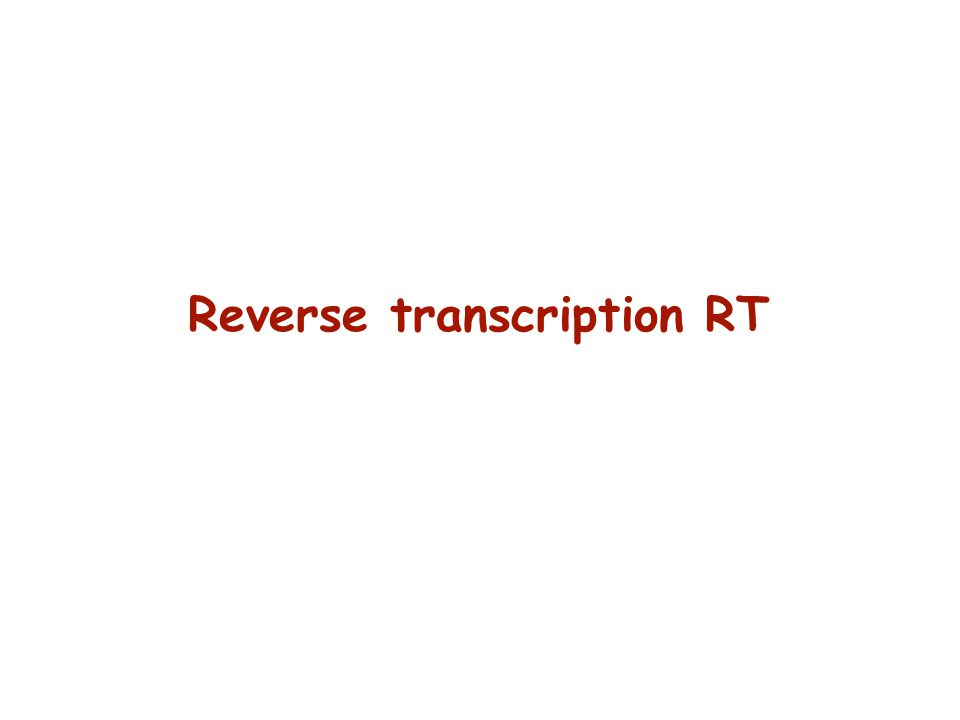 Reverse transcription RT