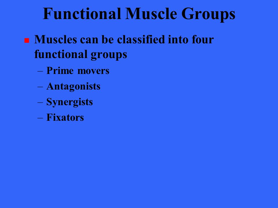 Muscles of Head: Tongue Movement Table 10.2