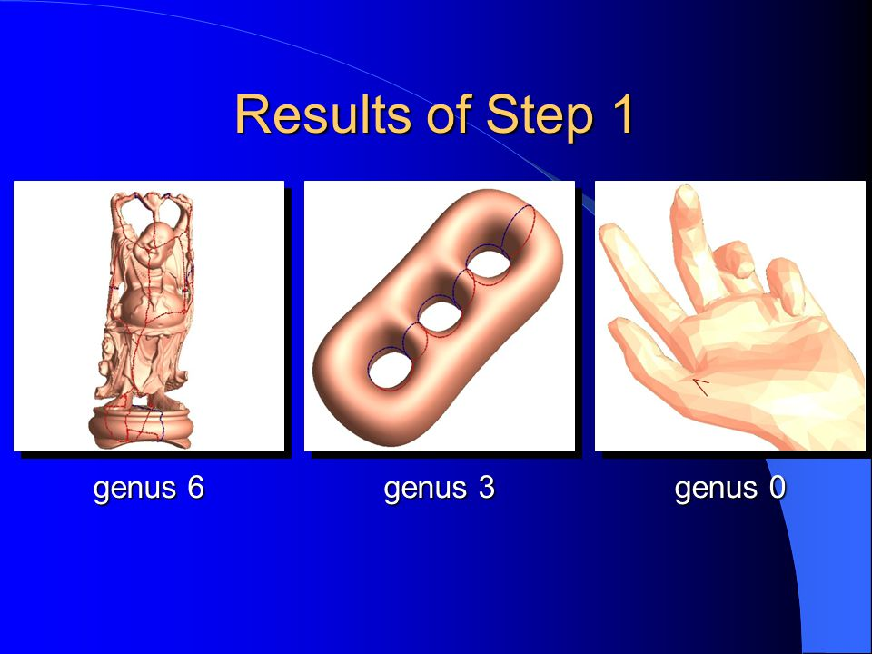Results of Step 1 genus 6 genus 0 genus 3