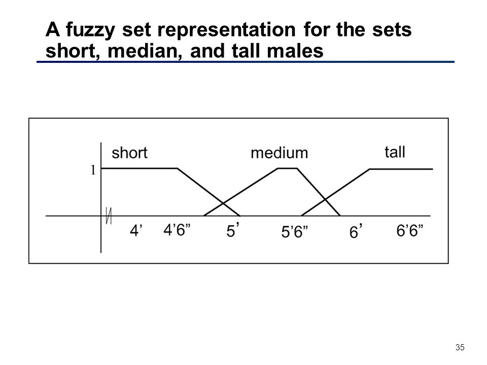 35 A fuzzy set representation for the sets short, median, and tall males
