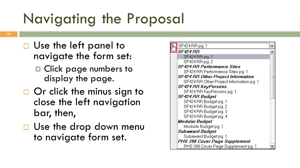Navigating the Proposal  Use the left panel to navigate the form set:  Click page numbers to display the page.