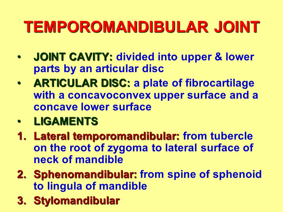 TEMPOROMANDIBULAR JOINT JOINT CAVITY:JOINT CAVITY: divided into upper & lower parts by an articular disc ARTICULAR DISC:ARTICULAR DISC: a plate of fib