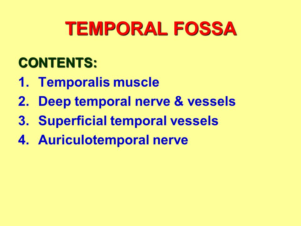 TEMPORAL FOSSA CONTENTS: 1.Temporalis muscle 2.Deep temporal nerve & vessels 3.Superficial temporal vessels 4.Auriculotemporal nerve