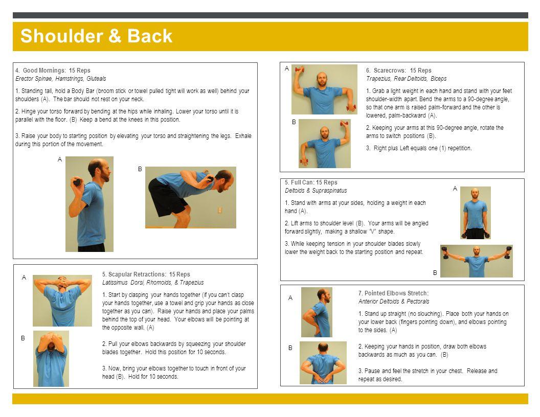 Shoulder & Back 5. Full Can: 15 Reps Deltoids & Supraspinatus 1.
